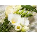 Bougie Parfumée Freesia Eclatant 210